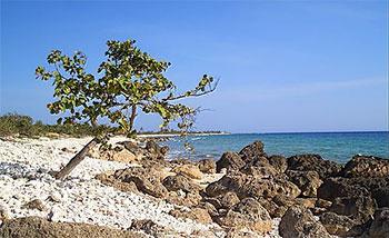 Playa Punta Maria Aguilar © eyanex, panoramio