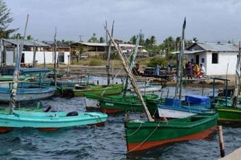 Barcos awaiting pescadores.