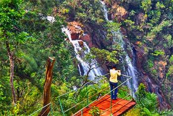 Les plus hautes chutes de l'île se nomment Gran Salto Guayabo