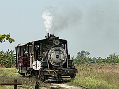 Tour on cars pulled  by a locomotora de vapor (steam-powered train)
