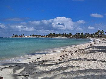 Playa Los Cocos - ranchon : snacks & bar • La Boca casas