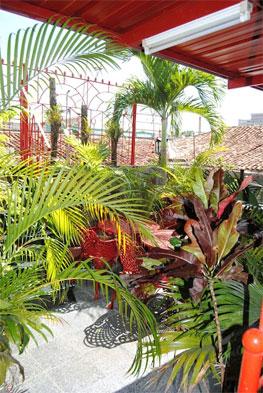 PENSION EL MORO   cubacasas.net   Pinar del Rio