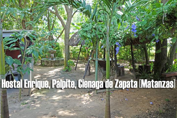 HOSTAL ENRIQUE | particuba.net | Cienaga de Zapata