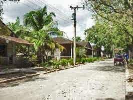 Bucolique rue