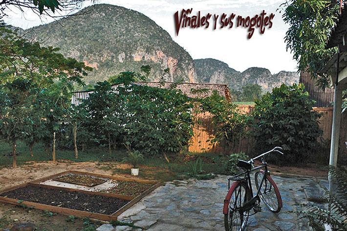 EL CAFETAL   cubacasas.net  Viñales