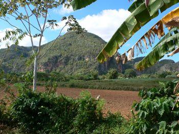 MILEYDIS FEITO | cubacasas.net |Viñales